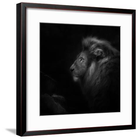Royalty-Ruud Peters-Framed Art Print