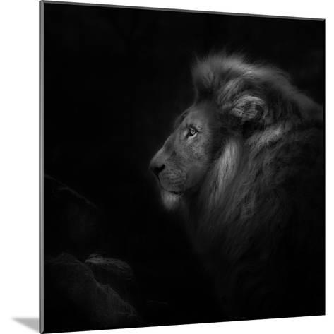 Royalty-Ruud Peters-Mounted Photographic Print