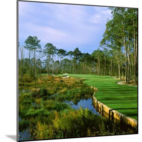 Trees in a Golf Course, Kilmarlic Golf Club, Powells Point, Currituck County, North Carolina, USA--Mounted Photographic Print