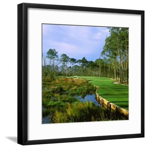 Trees in a Golf Course, Kilmarlic Golf Club, Powells Point, Currituck County, North Carolina, USA--Framed Art Print