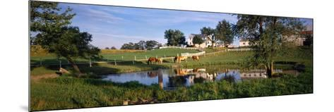 Horses Grazing at a Farm, Amish Country, Indiana, USA--Mounted Photographic Print
