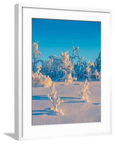 Cold Winter in Lapland Sweden with Temperatures -47 Celsius--Framed Art Print