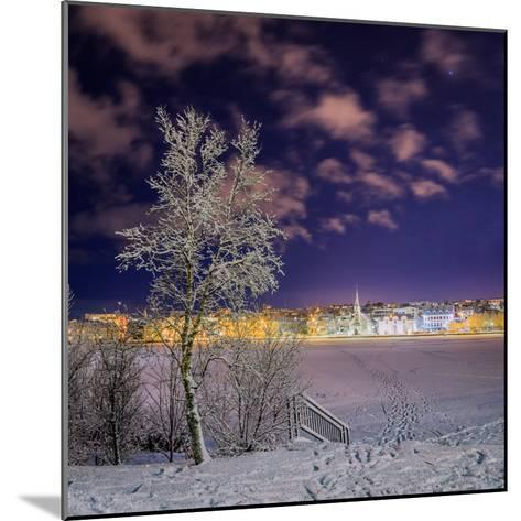 Snow Covered Trees and Frozen Pond, Reykjavik, Iceland--Mounted Photographic Print