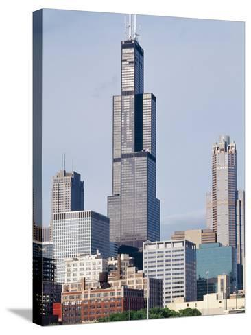 Buildings in a City, Willis Tower, Chicago, Cook County, Illinois, USA--Stretched Canvas Print