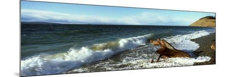Log on the Beach, Ebey's Landing National Historical Reserve, Whidbey Island, Island County--Mounted Photographic Print