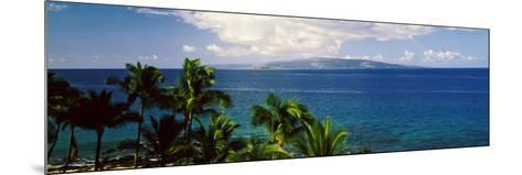 Palm Trees on the Beach, North Shore, Oahu, Hawaii, USA--Mounted Photographic Print