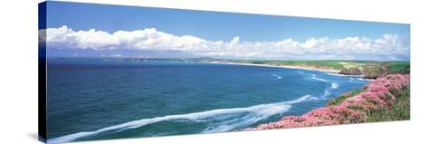 Halzephoron Cliff Cornwall England--Stretched Canvas Print