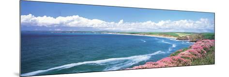 Halzephoron Cliff Cornwall England--Mounted Photographic Print