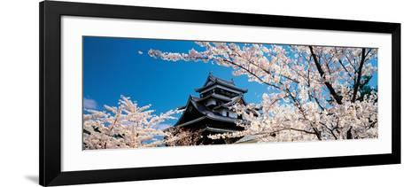 Matsue Castle Cherry Blossoms Shimane Japan--Framed Art Print