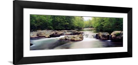 Middle Prong of Little Pigeon River, Great Smoky Mountains National Park, Sevier County--Framed Art Print