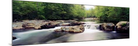 Middle Prong of Little Pigeon River, Great Smoky Mountains National Park, Sevier County--Mounted Photographic Print