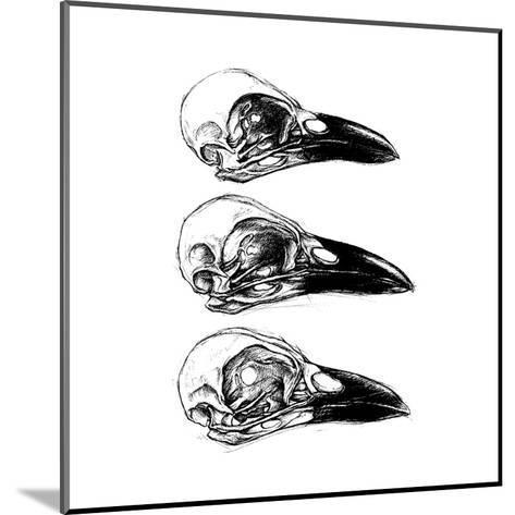 Crow Skull-13UG13th-Mounted Art Print