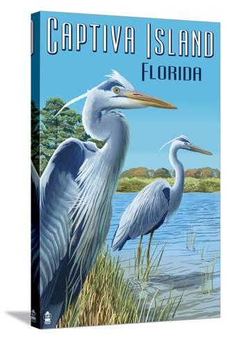 Captiva Island, Florida - Blue Herons in grass-Lantern Press-Stretched Canvas Print
