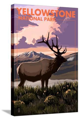 Yellowstone National Park - Elk and Sunset-Lantern Press-Stretched Canvas Print
