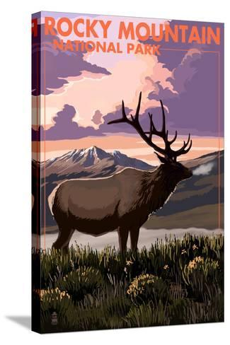 Rocky Mountain National Park - Elk and Sunset-Lantern Press-Stretched Canvas Print