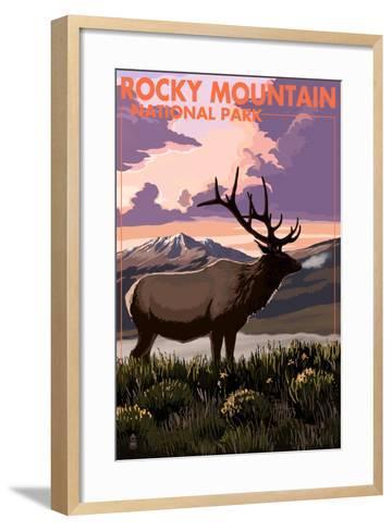 Rocky Mountain National Park - Elk and Sunset-Lantern Press-Framed Art Print