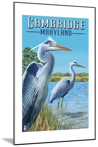 Cambridge, Maryland - Blue Herons-Lantern Press-Mounted Art Print
