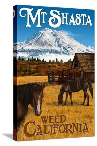 Mt. Shasta - Weed, California - Horses and Mountain-Lantern Press-Stretched Canvas Print