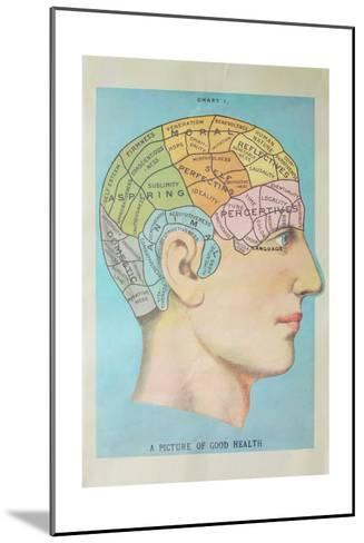 A Picture of Good Health - Vintage Cognitive Science Lithograph-Lantern Press-Mounted Art Print