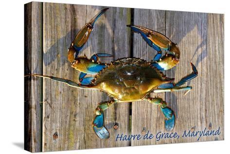 Harve De Grace, Maryland - Blue Crab on Dock-Lantern Press-Stretched Canvas Print