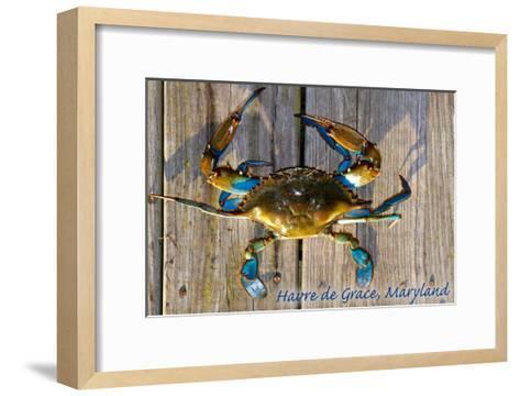 Harve De Grace, Maryland - Blue Crab on Dock-Lantern Press-Framed Art Print