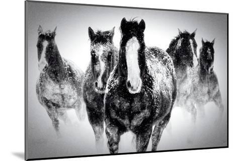 Winter Rumble-Deb Lee Carson-Mounted Premium Giclee Print