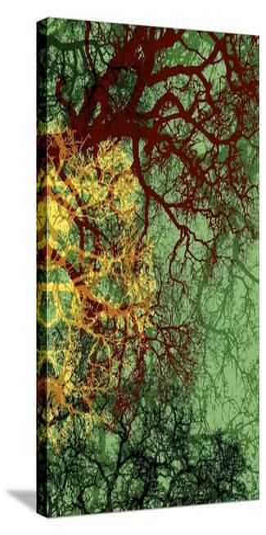 Entangle II-James Burghardt-Stretched Canvas Print