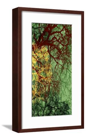 Entangle II-James Burghardt-Framed Art Print