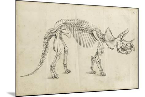 Dinosaur Study II-Ethan Harper-Mounted Art Print