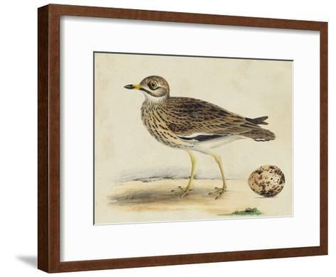 Meyer Shorebirds IV-H^ l^ Meyer-Framed Art Print