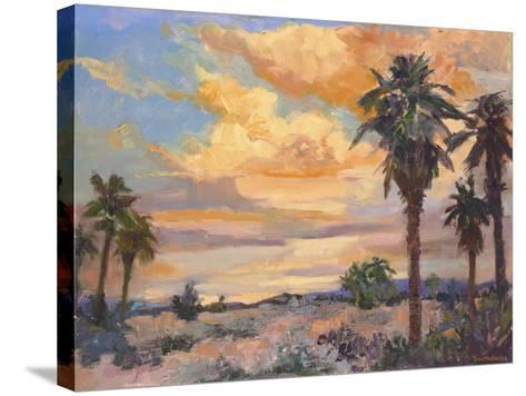Desert Repose I-Nanette Oleson-Stretched Canvas Print
