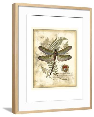 Regal Dragonfly I-Vision Studio-Framed Art Print