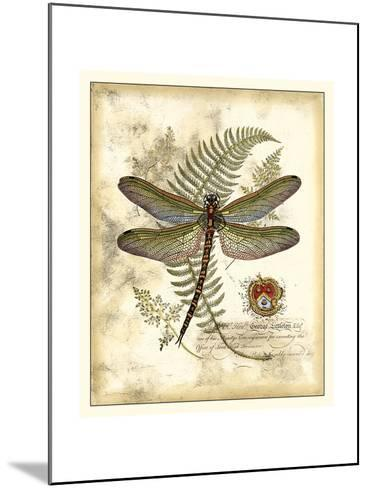 Regal Dragonfly I-Vision Studio-Mounted Art Print