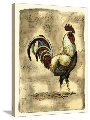 Tuscany Rooster I-D^ Bookman-Stretched Canvas Print