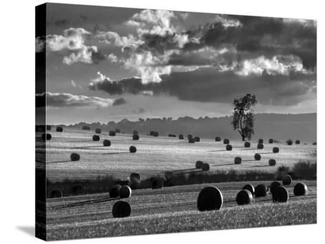 Rolls of Hay-Martin Henson-Stretched Canvas Print