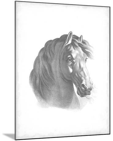 Equestrian Blueprint II-Vision Studio-Mounted Art Print