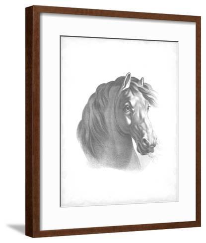 Equestrian Blueprint II-Vision Studio-Framed Art Print
