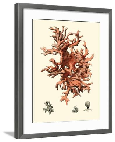 Red Coral III-Vision Studio-Framed Art Print