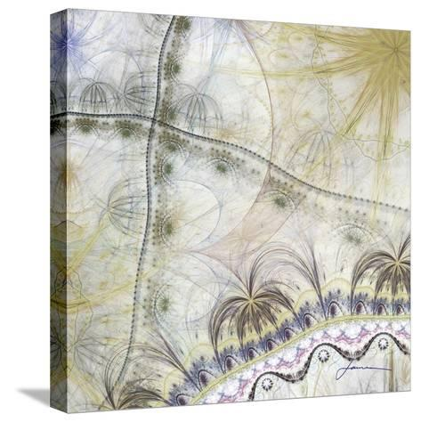 Bedouin Map II-James Burghardt-Stretched Canvas Print