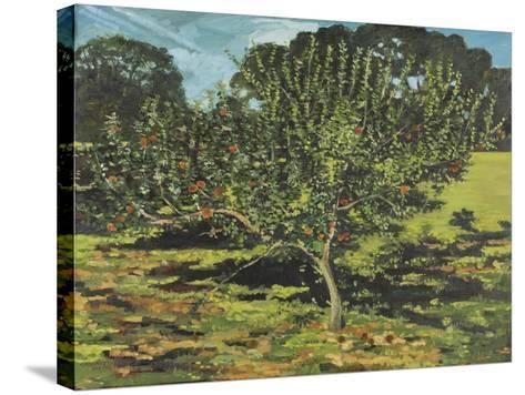 The Apple Tree, 1990-Margaret Hartnett-Stretched Canvas Print