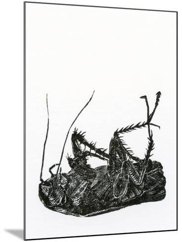 Dead Cockroach, 2014-Bella Larsson-Mounted Giclee Print