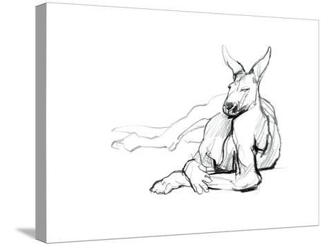 Resting Athlete (Red Kangaroo), 2012-Mark Adlington-Stretched Canvas Print