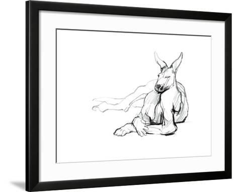 Resting Athlete (Red Kangaroo), 2012-Mark Adlington-Framed Art Print