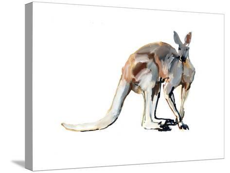 Roo, (Red Kangaroo), 2012-Mark Adlington-Stretched Canvas Print