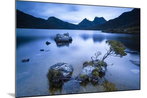 Cradle Mountain National Park, Tasmania, Australia. Dove Lake at Sunrise-Matteo Colombo-Mounted Photographic Print