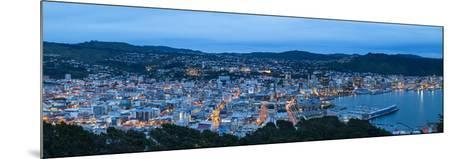 Elevated View over Central Wellington Illuminated at Dusk, Wellington, North Island, New Zealand-Doug Pearson-Mounted Photographic Print