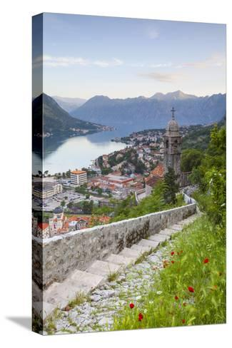 Elevated View over Kotor's Stari Grad (Old Town) and the Bay of Kotor, Kotor, Montenegro-Doug Pearson-Stretched Canvas Print