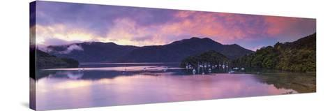 Ngakuta Bay, Queen Charlotte Sound, Marlborough Sounds, South Island, New Zealand-Doug Pearson-Stretched Canvas Print