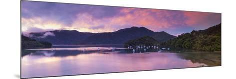 Ngakuta Bay, Queen Charlotte Sound, Marlborough Sounds, South Island, New Zealand-Doug Pearson-Mounted Photographic Print