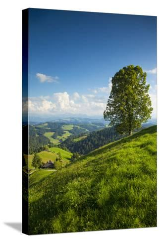 Emmental Valley, Berner Oberland, Switzerland-Jon Arnold-Stretched Canvas Print
